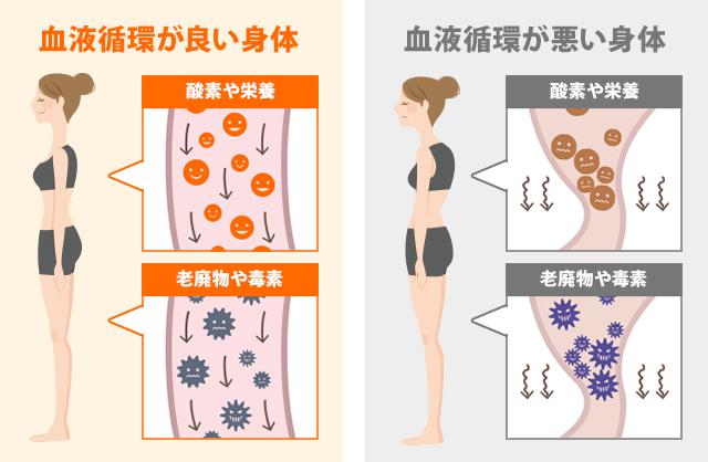血液循環が良い身体・血液循環が悪い身体